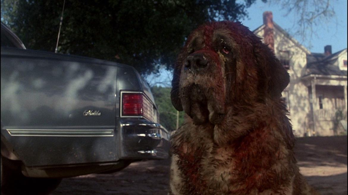 Cujo Movie Review Bloody Good Horror